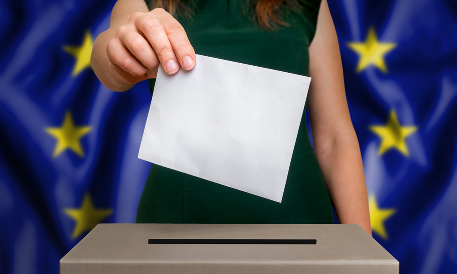 Polarisation and fragmentation: what to expect if the UK holds European elections