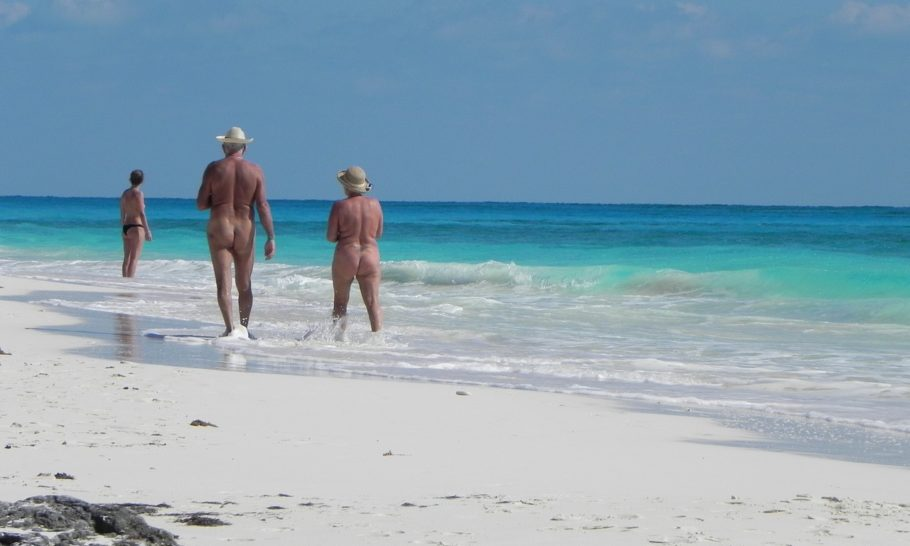 The Article: Nudism may not be about sex. But it isn't about innocence either.