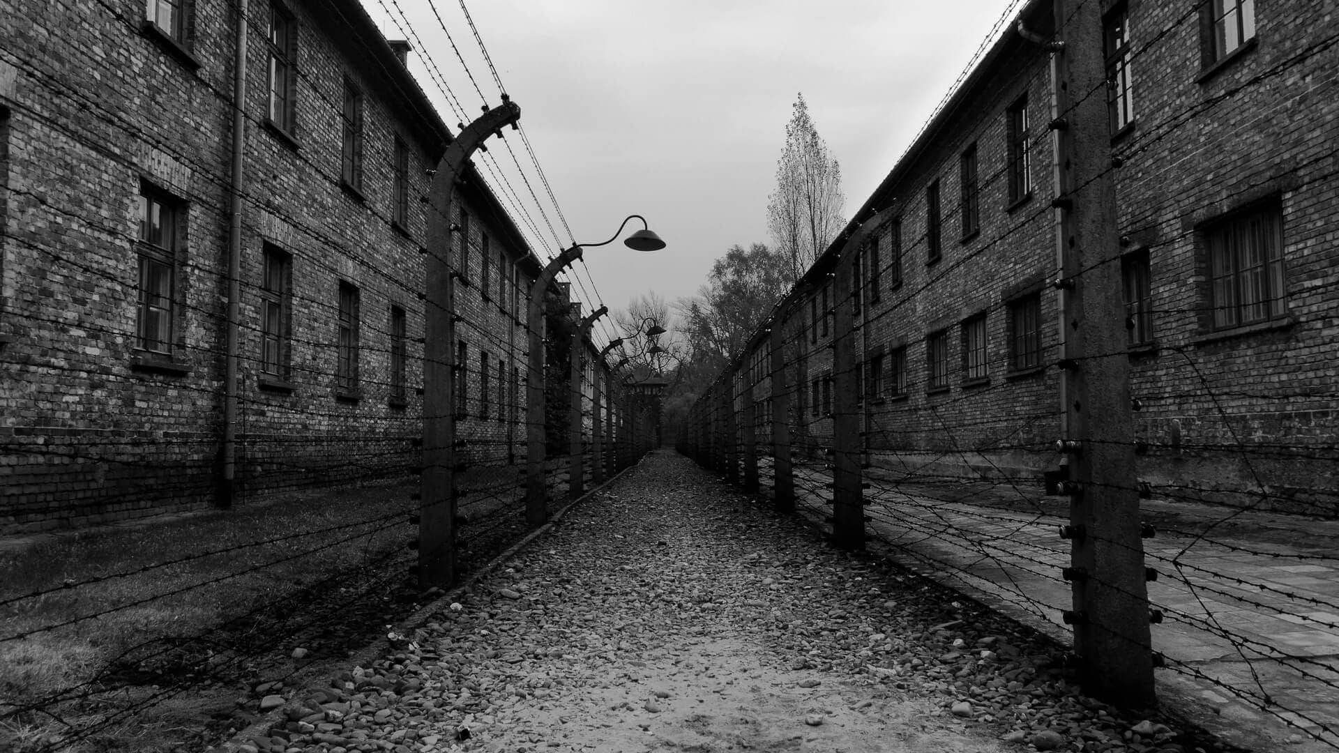Auschwitz%2C%20Pol%C3%B3nia%20-%20Clementa%20Moreno%2FShutterstock