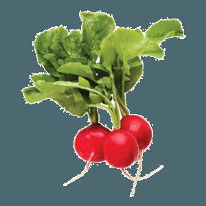 ravanello rosso