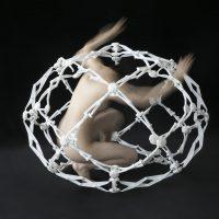 Nico Bu - profile image