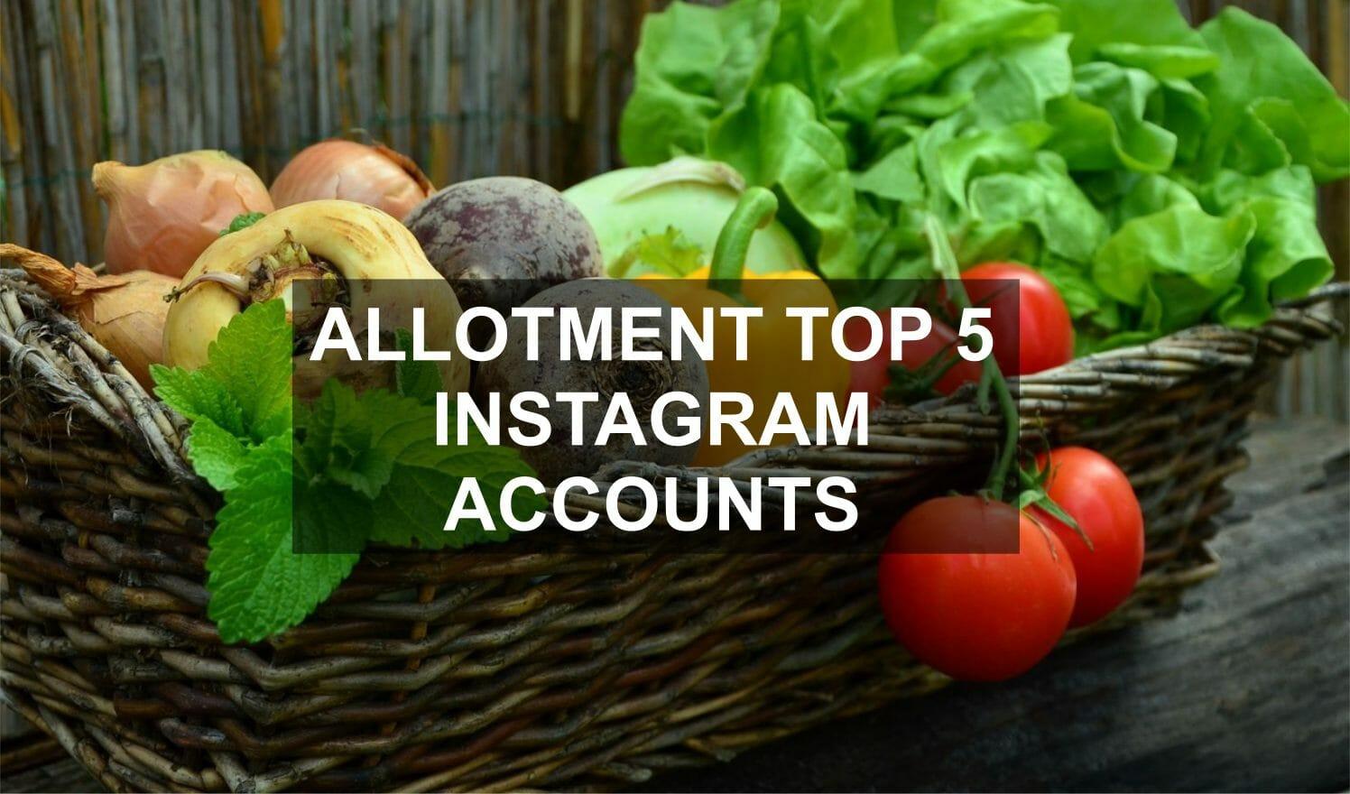 Allotment Top 5 Instagram