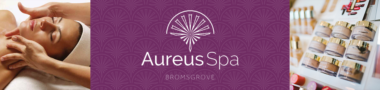 Bromsgrove Spa Banner