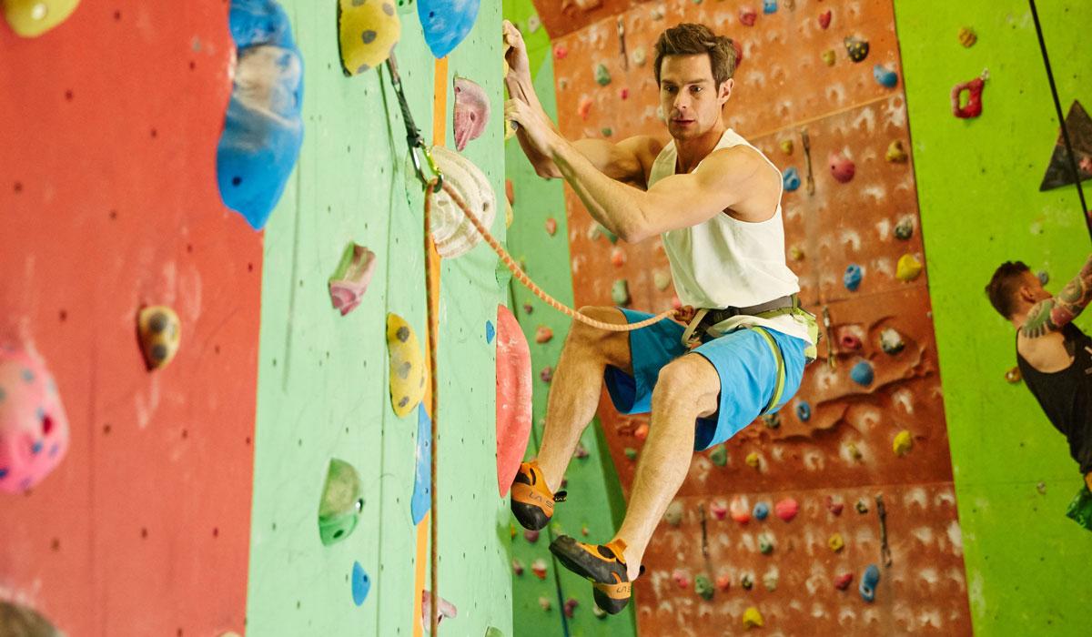 Adult Climbing Wall
