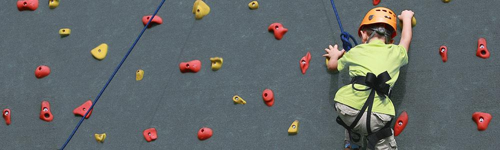 Climbing Party