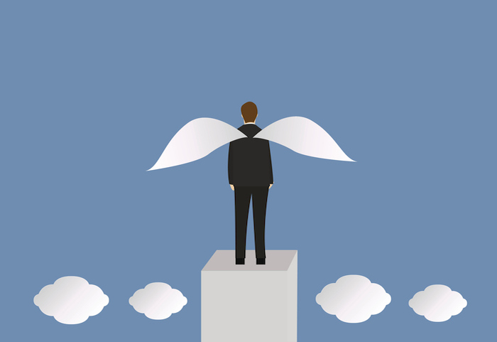 What makes angel investors invest?