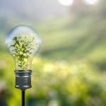 SMEs sustainability