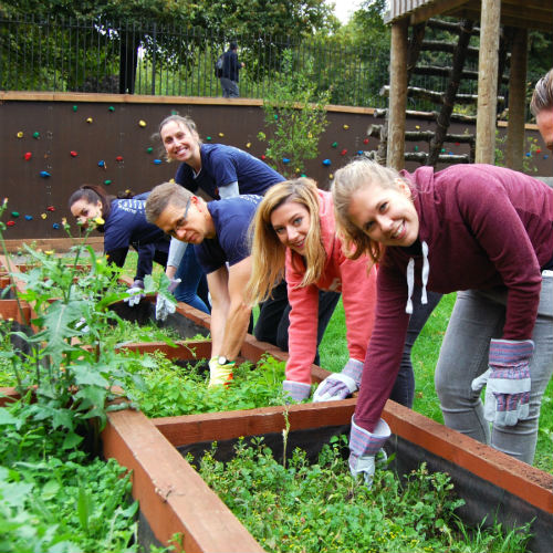 Check out the Garden Challenge for your next team building activity