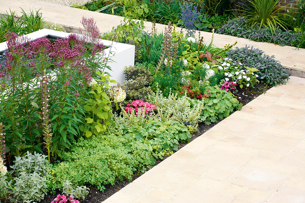 a raised border full of bright flowers and colourful planting