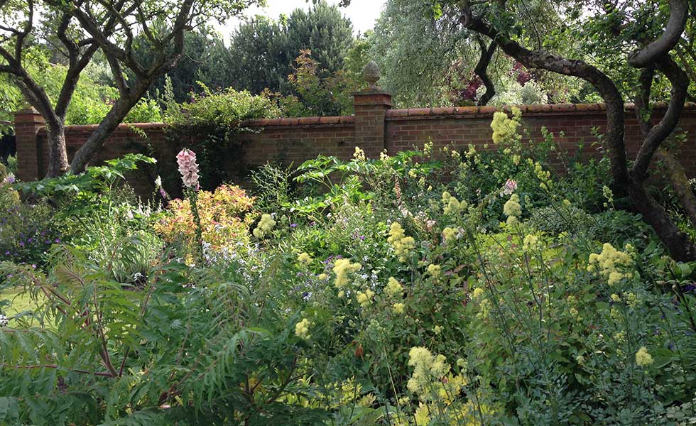 walled garden with wild borders