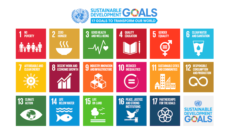 SDG (Sustainable Development Goals). Come investirci? | Robeco