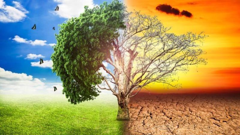 60 secondi su… Il clima cambia, e cambia anche il modo di investire