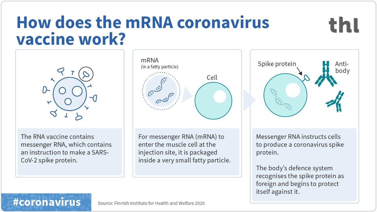 Come funzionano i vaccini a mRNA? | SciShow