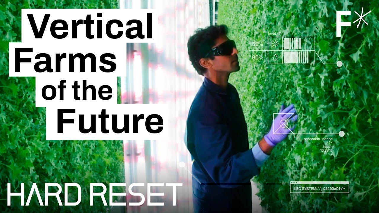 L'agricoltura verticale potrebbe conquistare il mondo   Hard Reset by Freethink