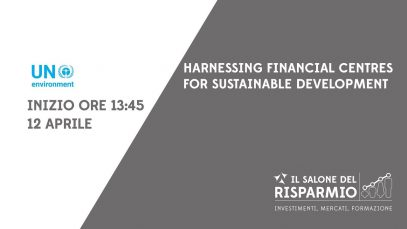 12B1B-8211-Harnessing-Financial-Centres-for-Sustainable-Development-attachment