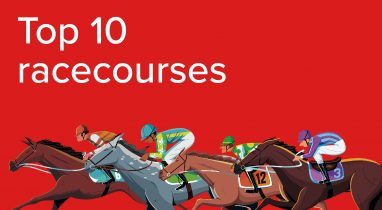 Racing post definitive guide to betting on horses top online betting sites uk