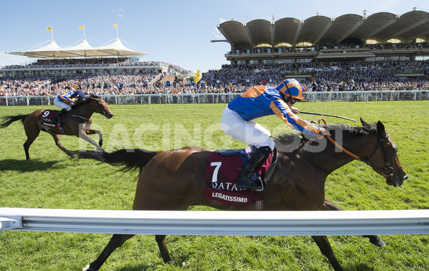00423c972 Glorious Goodwood - Guide to Horse Racing