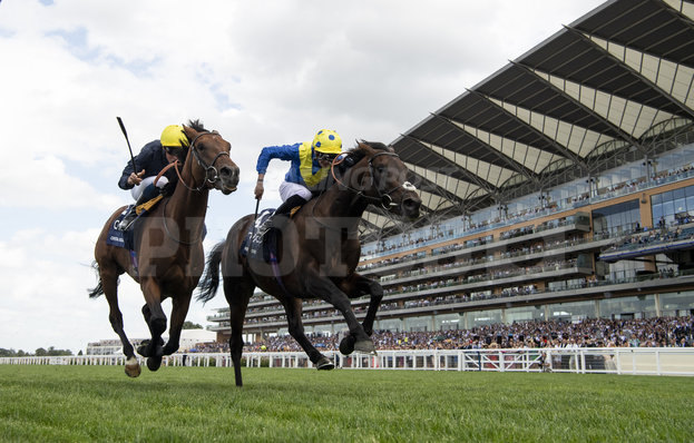 King George Vi And Queen Elizabeth Stakes Guide To Horse
