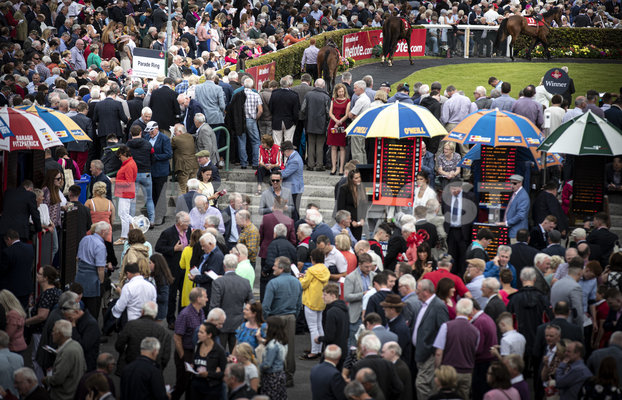 betting ring