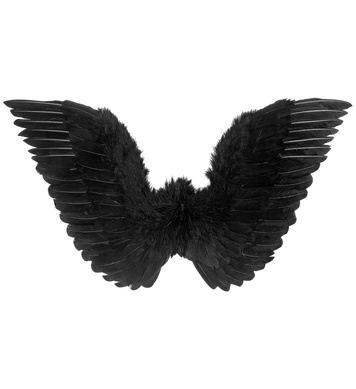 BLACK FEATHERED WINGS 86cm x 31cm