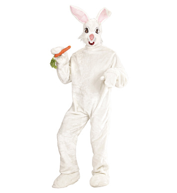 PLUSH BUNNY COSTUME (costume gloves shoe covers mask)