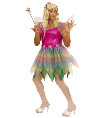 RAINBOW FAIRY MENS XL (dress wings)