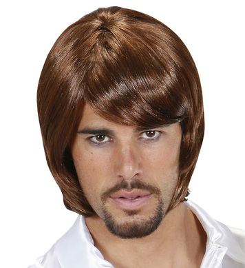 70s POP STAR BJORN WIG BOXED BROWN