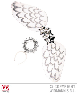 ANGEL DRESS UP SET - WHITE/SILVER (wings halo)