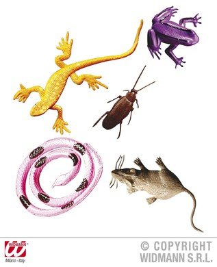 SCARY ANIMALS AND INSECTS CARDED
