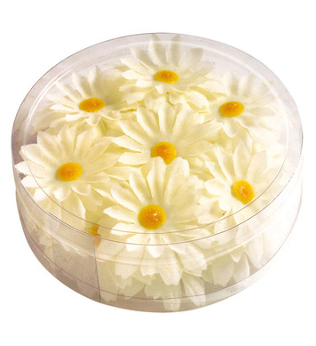 DECORATIVE DAISY FLOWERS BOX 20