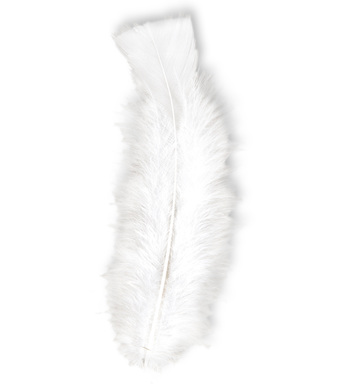 BAG OF FEATHERS WHITE