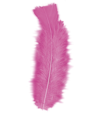 BAG OF FEATHERS PINK