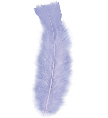 BAG OF FEATHERS PURPLE