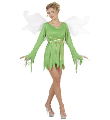 FOREST FAIRY DREAMGIRLZ COSTUME - M (dress wings)