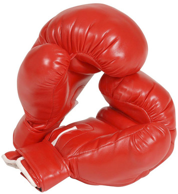 BOXING GLOVES PROF - ADULT SIZE