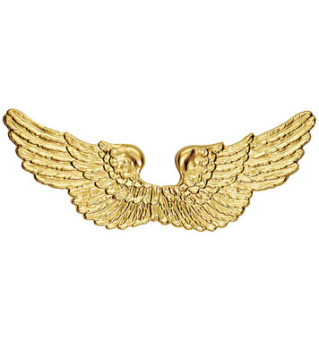 ANGEL WINGS GOLD PLASTIC