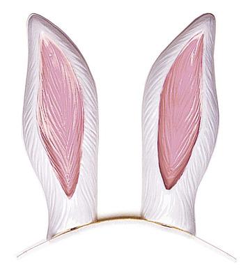 RABBIT EARS PLASTIC