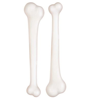 BAG OF 2 BONES 23cm