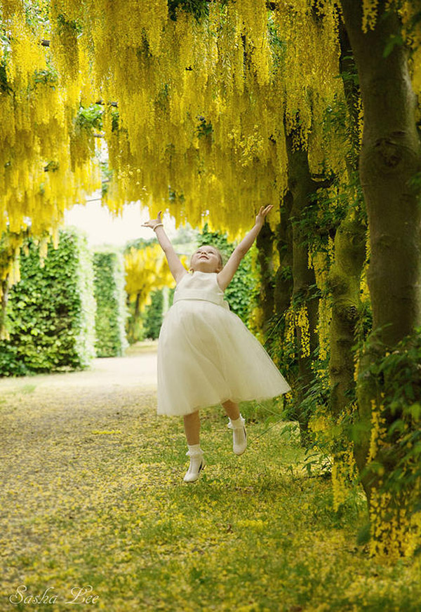 Beautiful yellow flower backdrop at UK wedding venue with natural wedding photography by Sasha Lee Photography