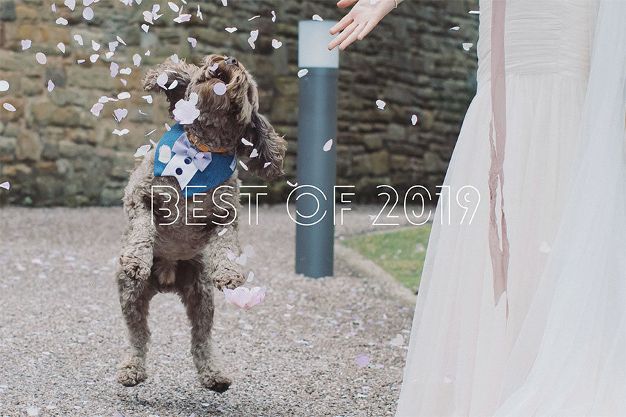 Best Natural Wedding Photography of 2019