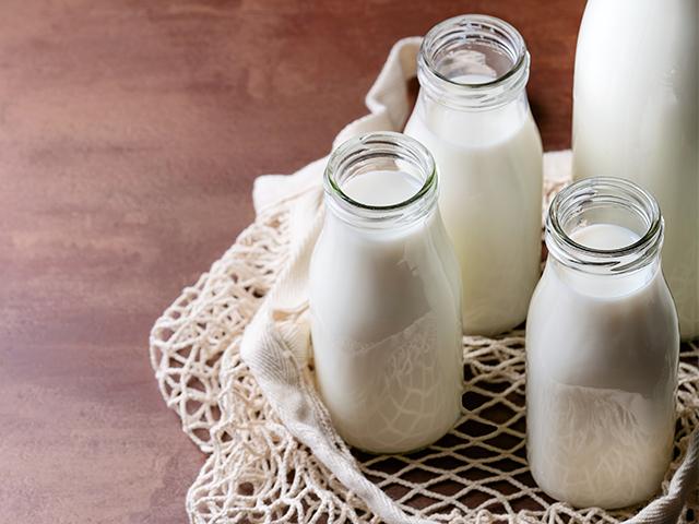 Sütle İlgili Merak Ettiklerinizi Araştırdım