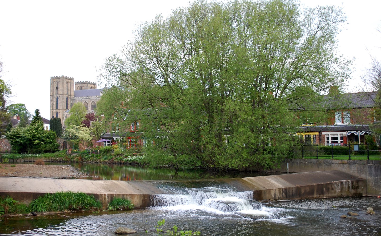 Alma Weir In Ripon