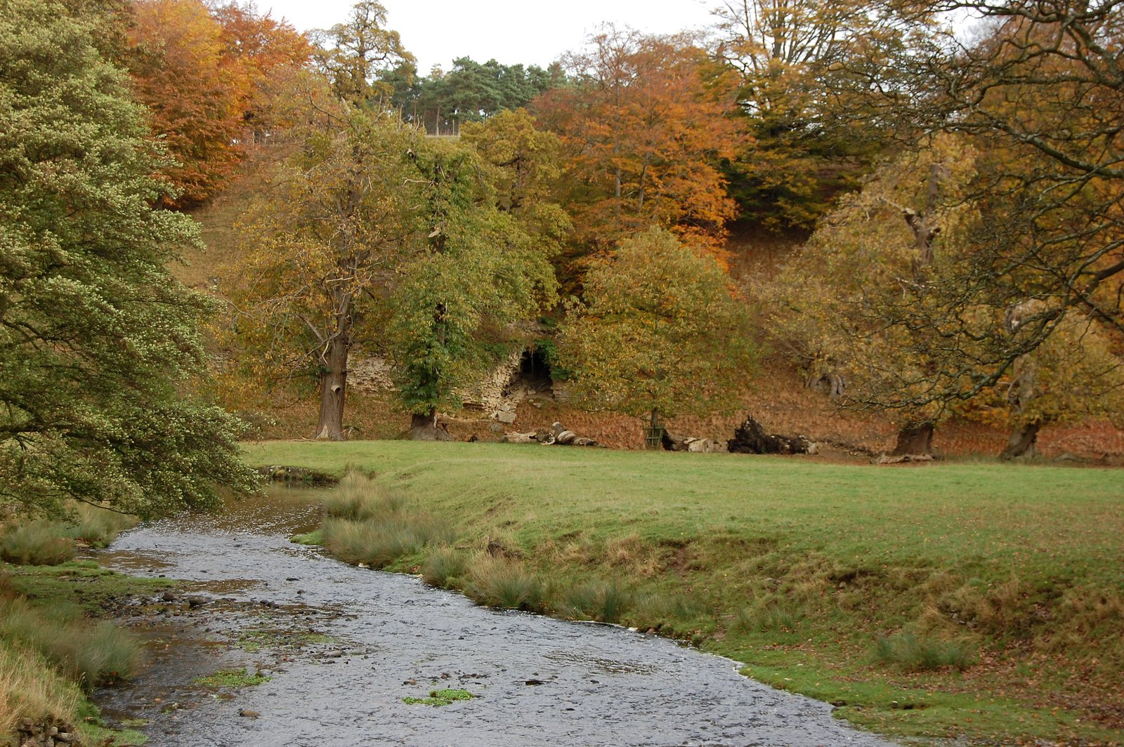 The River Skell at Fountains Abbey