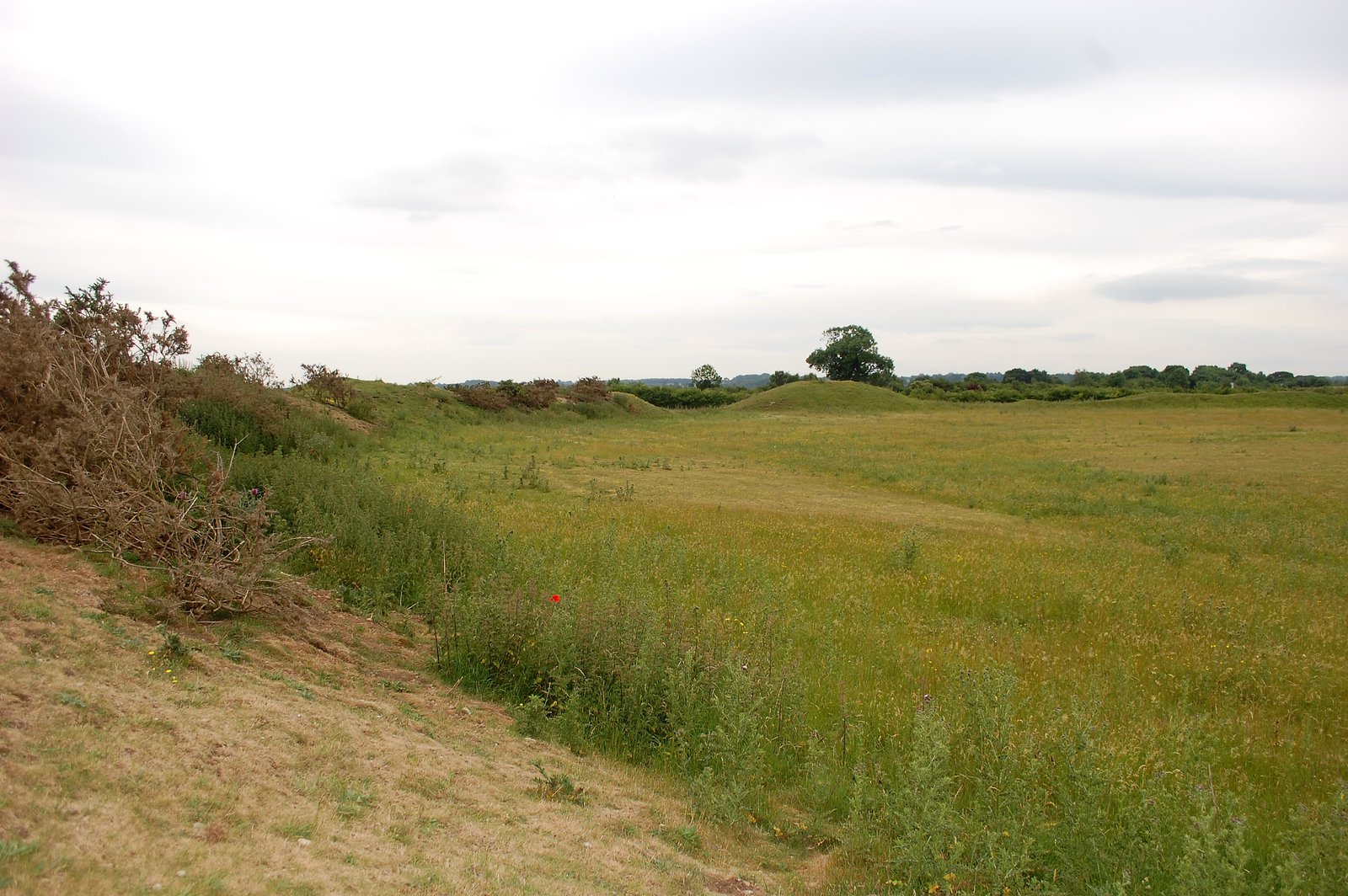 Southern Curve Of Central Henge At Thornborough