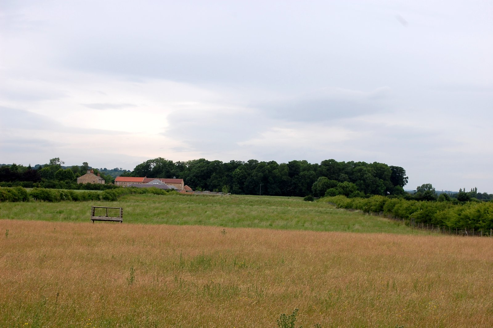 View From Central Henge To Northern Henge