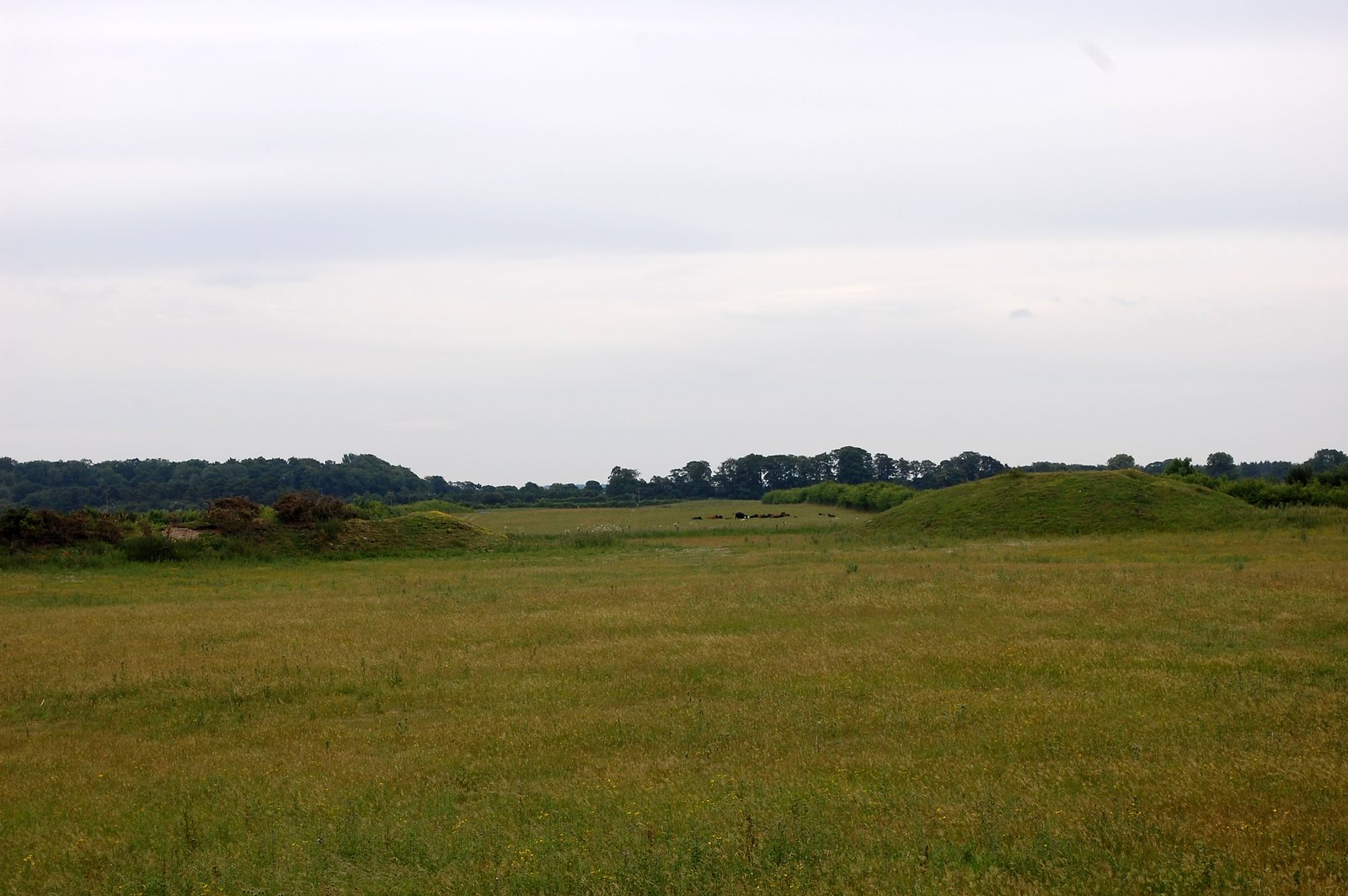 View From Central Henge Towards Southern Henge