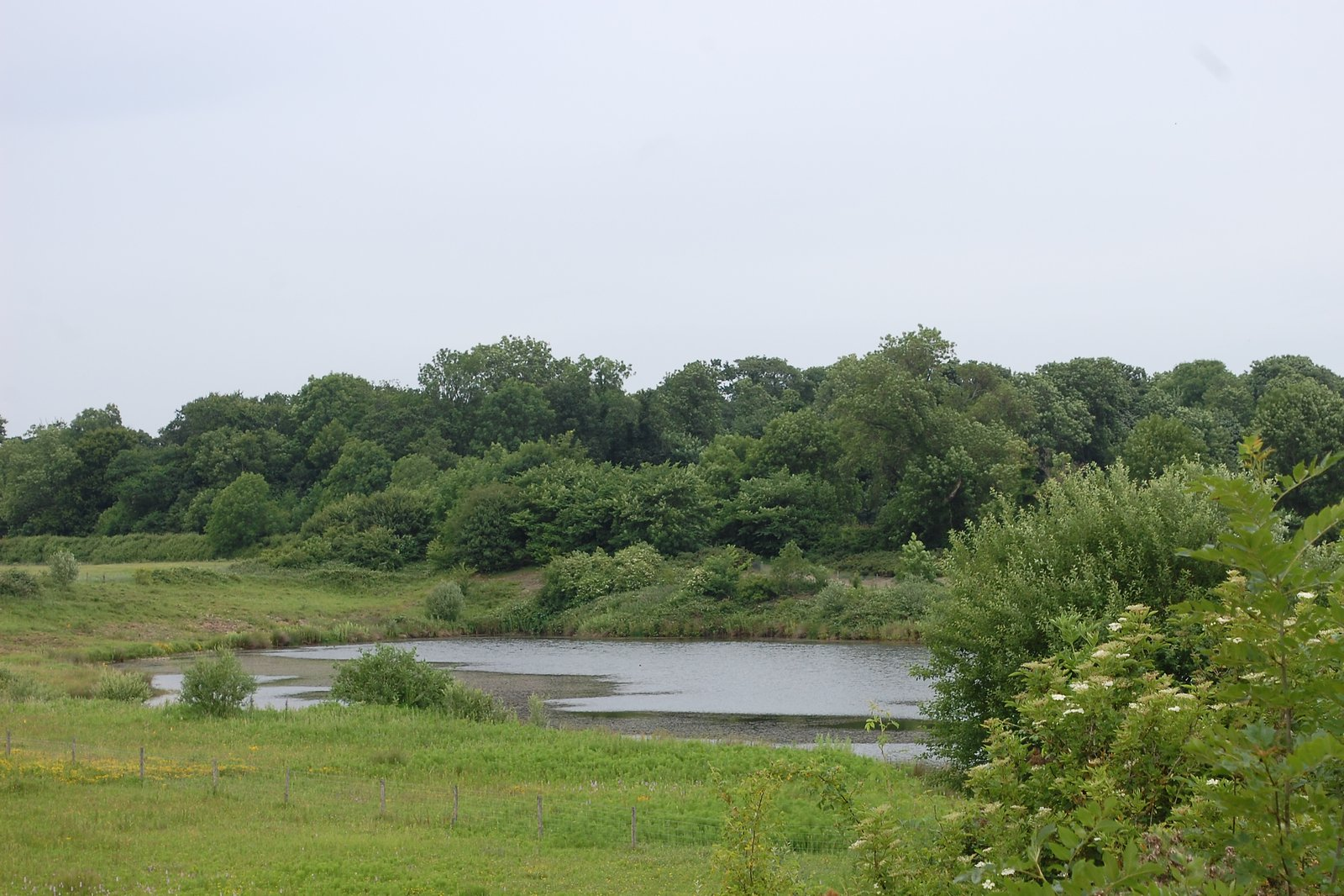 Silt Pits At Nosterfield Nature Reserve