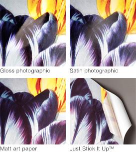 Detail_prints_quad