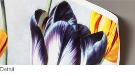 Detail_prints_details