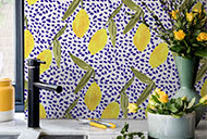 Lemon-and-dots-lead-image